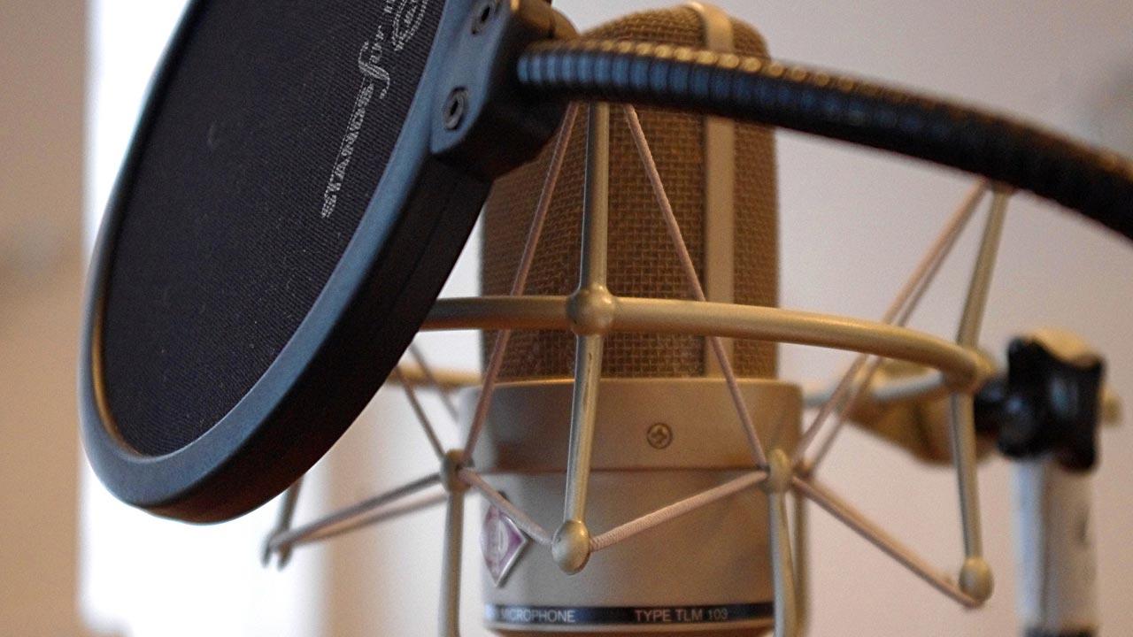 Die professionelle Tonaufnahme erfolgt ausschließlich in einer ebenso professionellen Umgebung.