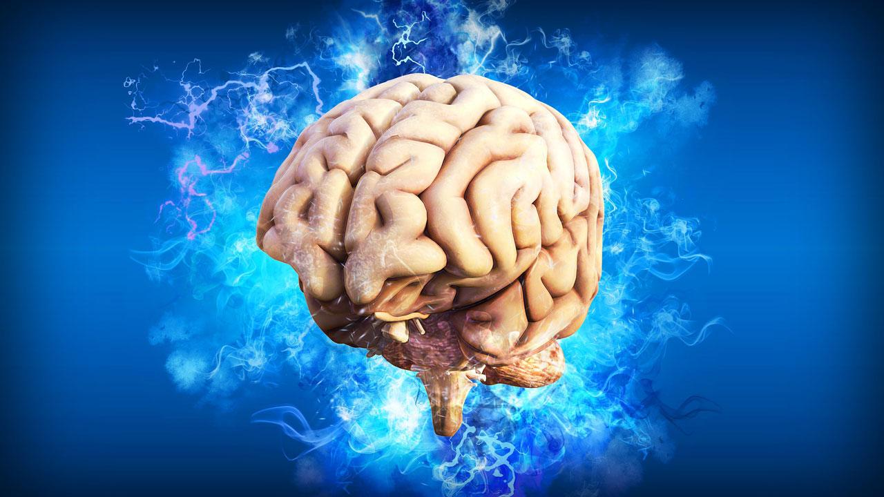 Das menschliche Gehirn kann viel. Doch wenn wir es entlasten können, freut es sich auch. Lippensynchronisation entlastet.