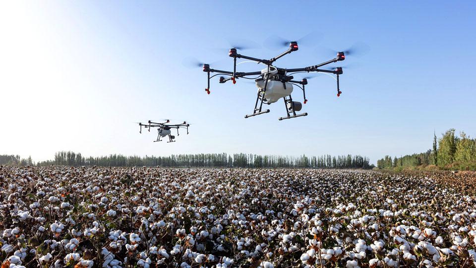 Fernab von Mensch und Tier fliegen diese Drohnen in der Landwirtschaft. Bildquelle: https://pixabay.com/de/photos/dji-dji-landwirtschaft-4208863/