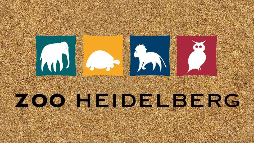 Videoprojektion für Zoo Heidelberg erstellt von der Pionierfilm.