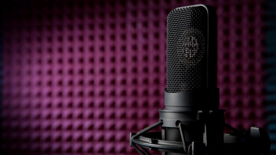 Die Pioniere bieten jede Menge unterschiedliche professionelle Sprecher.