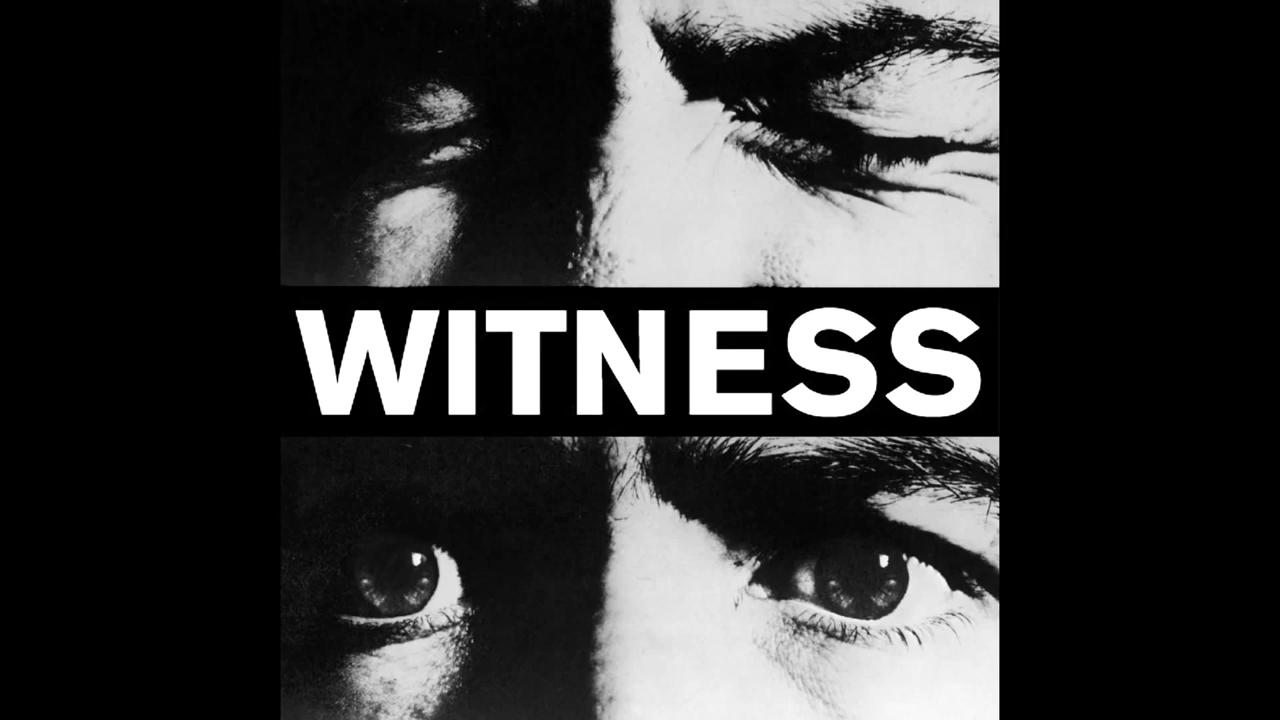 Wir spendeten 1000 Euro für die Beschaffung von Kameras an die Organisation WITNESS.